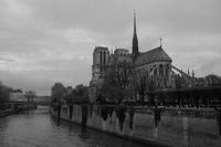 Katedrála Notre-Dame II.
