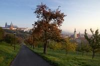 Ráno na Petříně