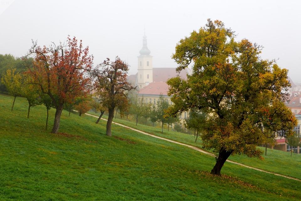 Podzimní mlha II.
