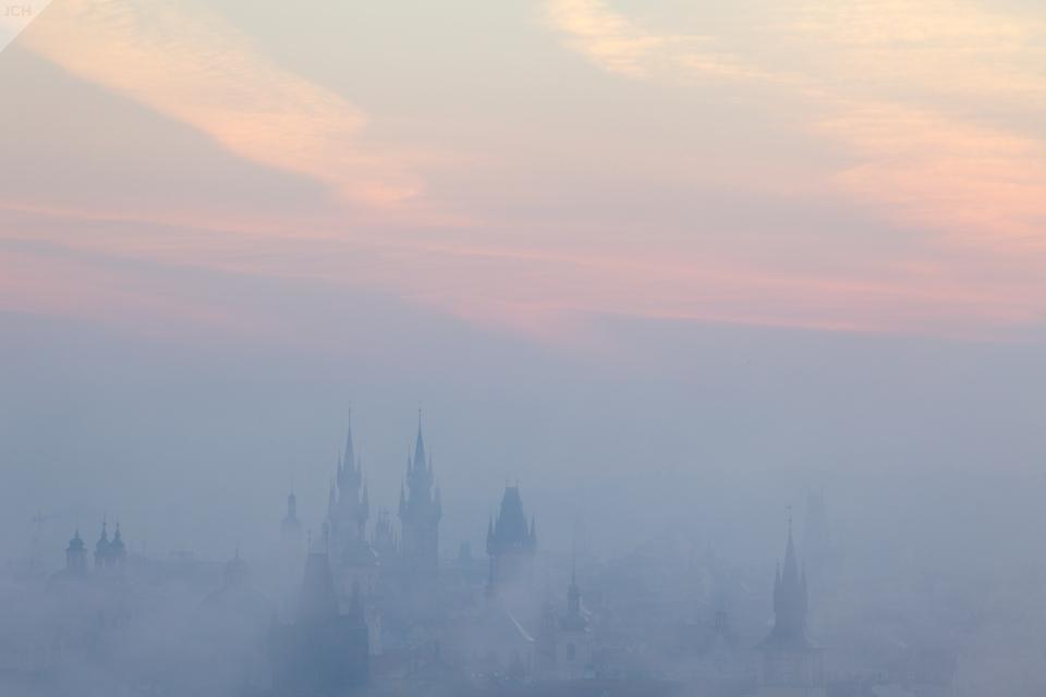 Růžová mlha