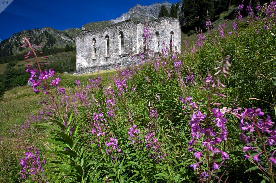 Kostel akvěty