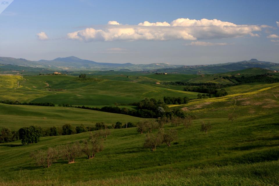 Zelená krajina II