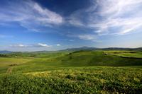 Zelená krajina