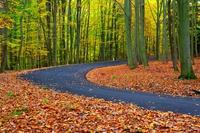 Podzimní zákruta